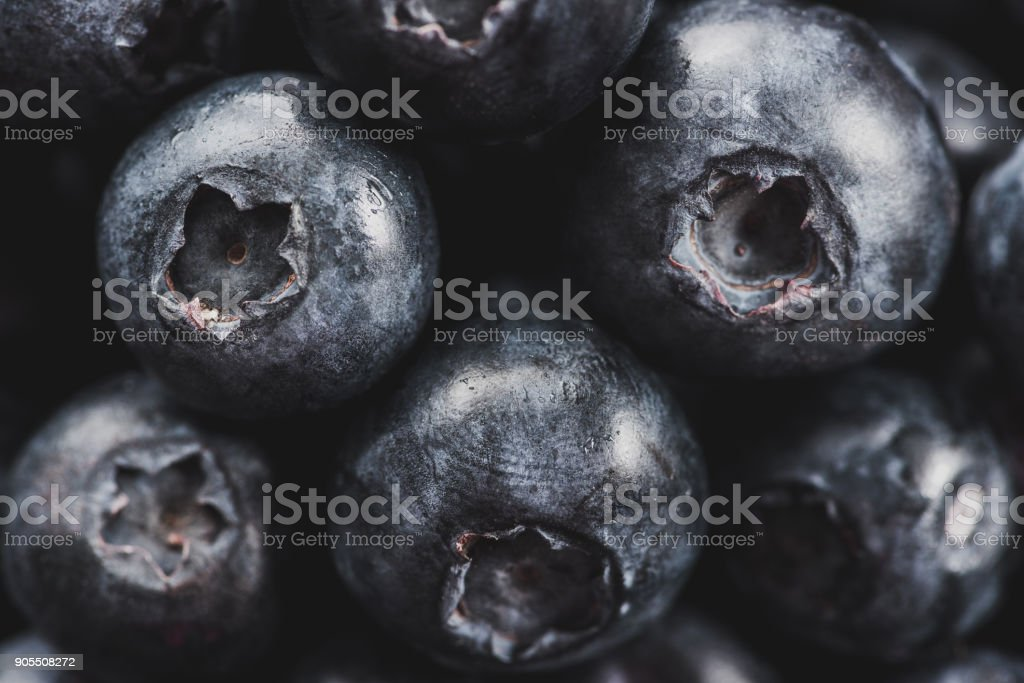 Blueberries in detailed macro close up stock photo