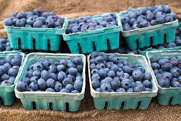 blueberries in disposable carton boxes stock photo