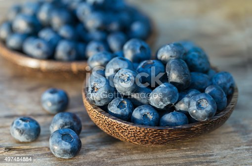 istock Blueberries in garden 497484884