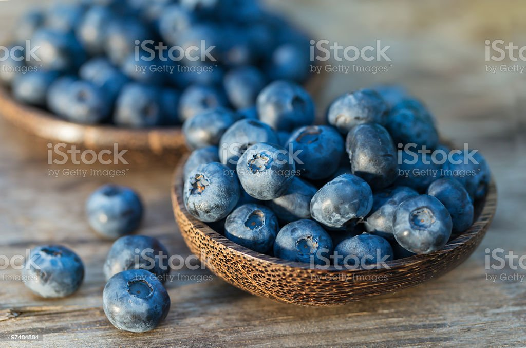 Blueberries in garden stock photo