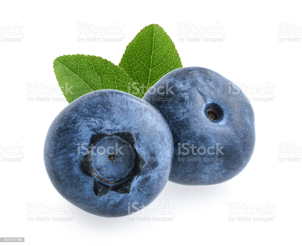 Blueberries isolated on white background stock photo
