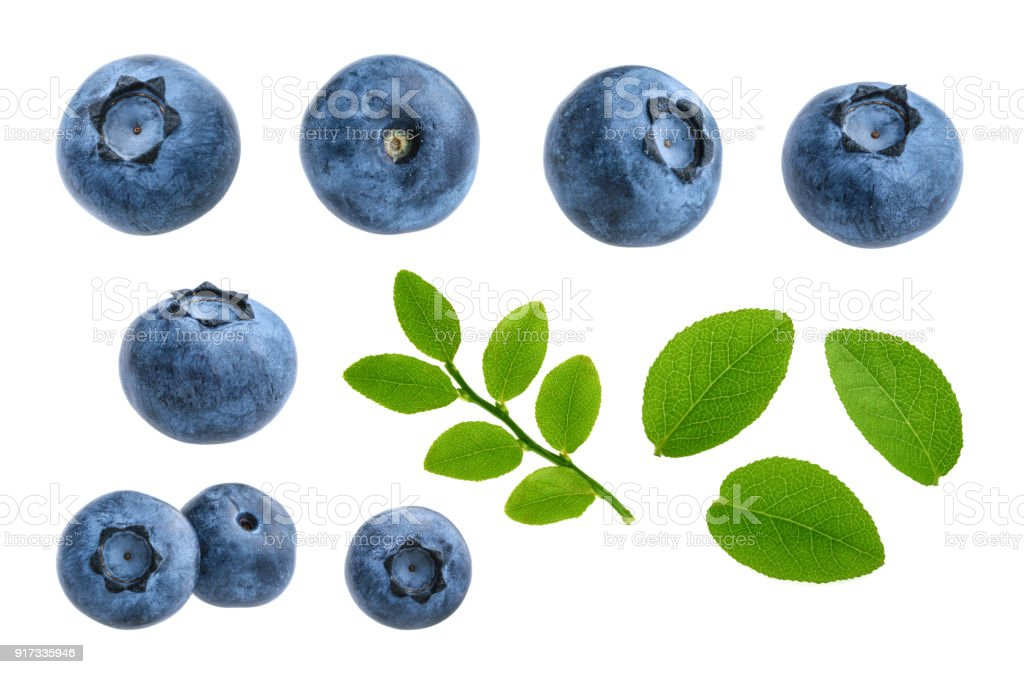 Blueberries isolated on white background without shadow set stock photo