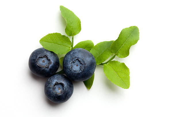 Blueberries stock photo