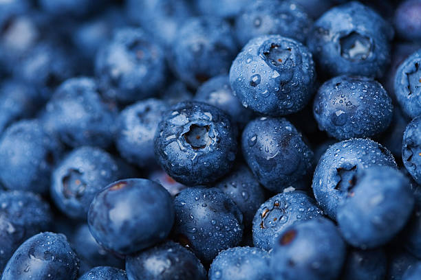 Blueberries  blueberry stock pictures, royalty-free photos & images