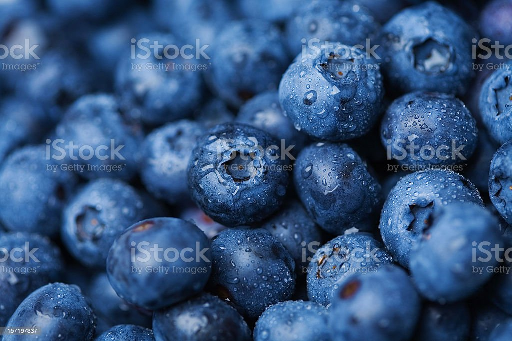 Blueberries bildbanksfoto