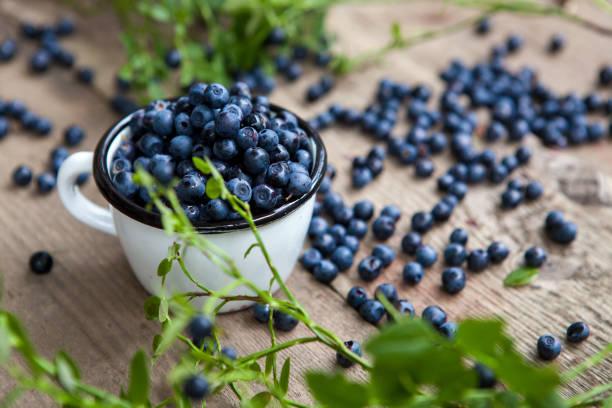 blueberries - blueberries - stock snímky, obrázky a fotky