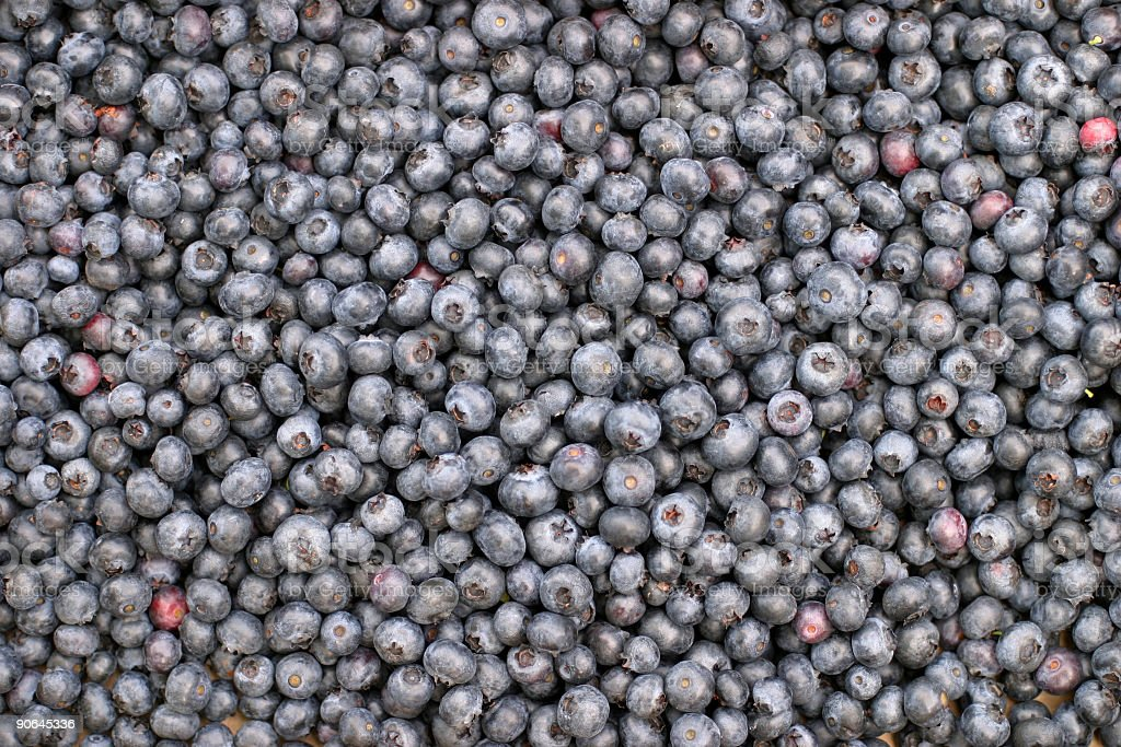Blueberries royalty-free stock photo