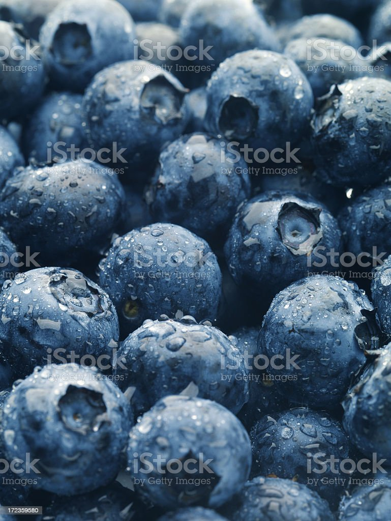Blueberries Vertical royalty-free stock photo