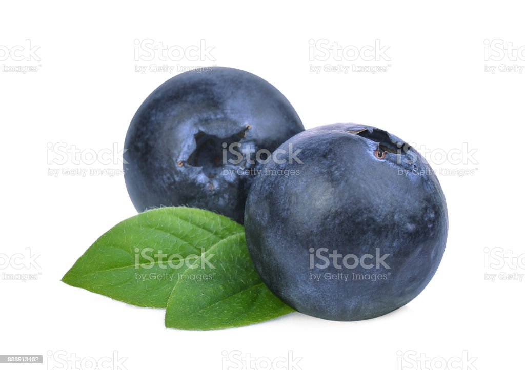 blueberries with green leaves isolated on white background stock photo