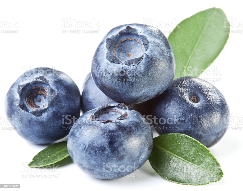 Blueberries with leaves. stock photo