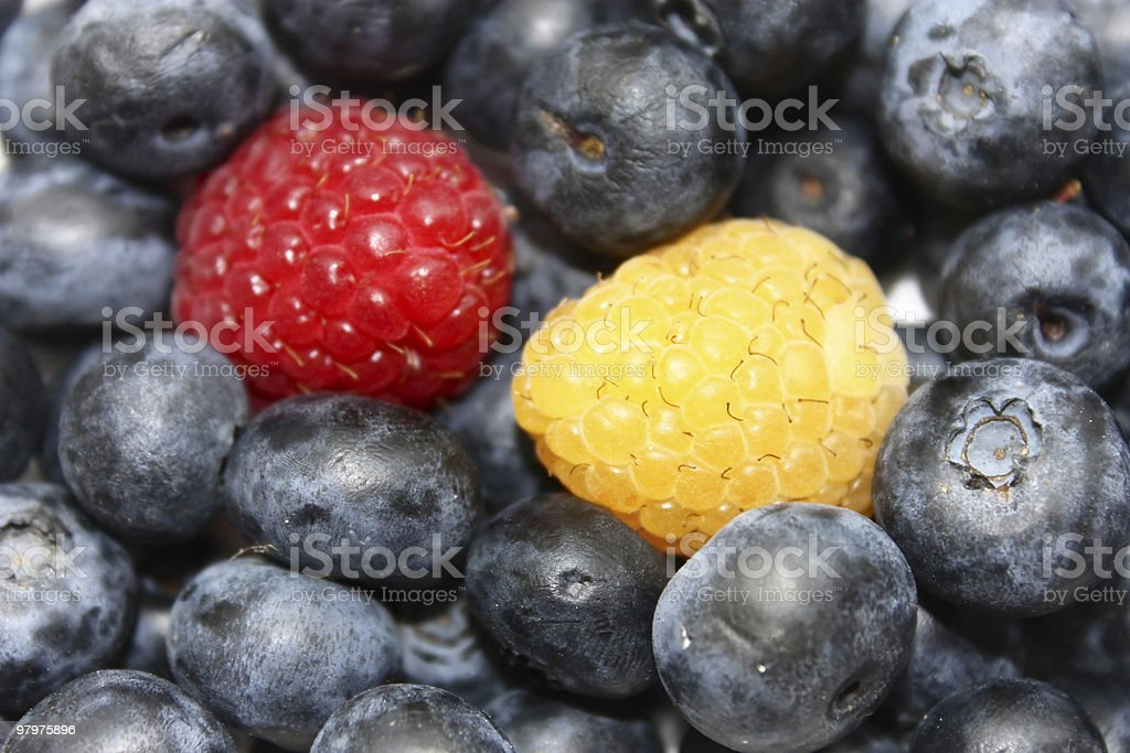 Blueberries with raspberries royalty-free stock photo