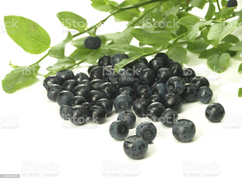 Blueberries,isolated royalty-free stock photo