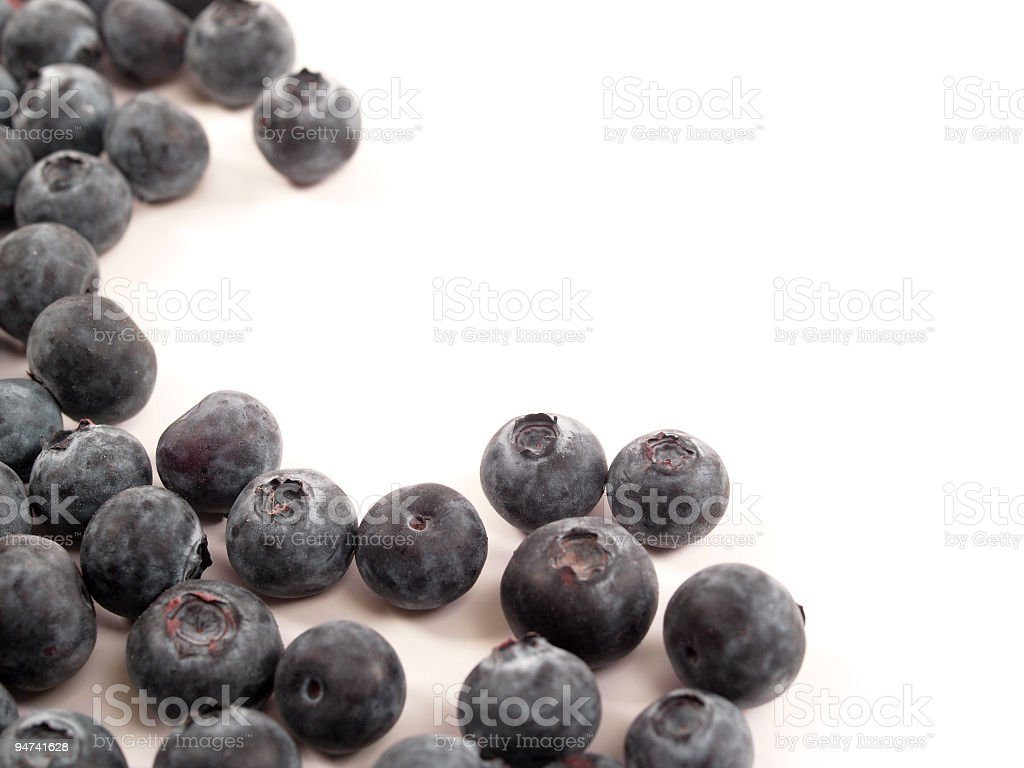 Blueberry and White royalty-free stock photo