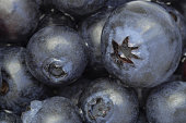 Blueberry background: fresh ripe fruits close-up, top view