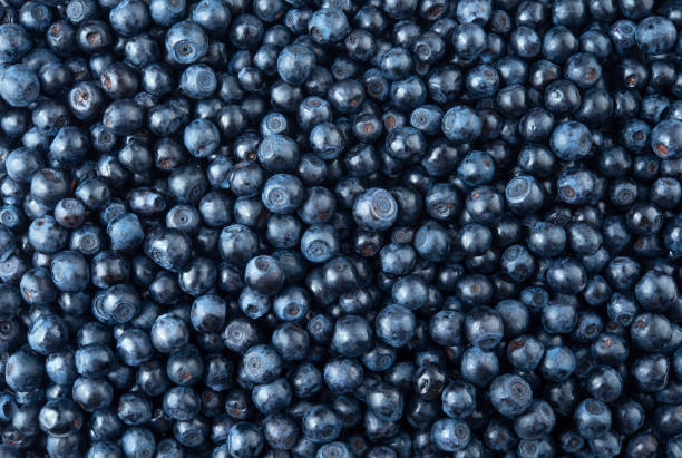 blueberry. blueberry background. food background. top view. - blueberry stock photos and pictures