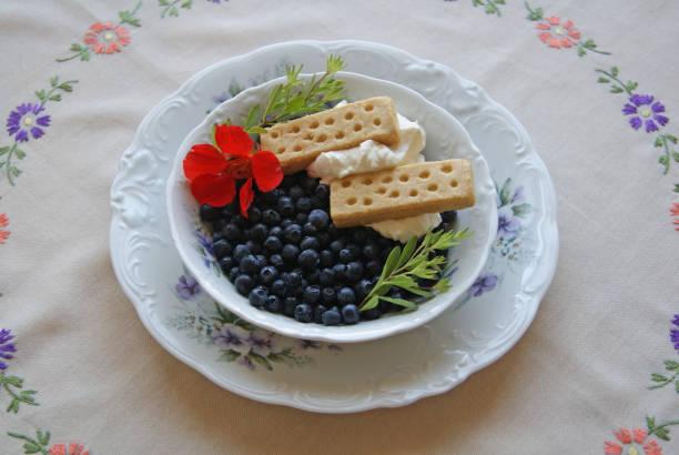 Blueberry dessert bildbanksfoto