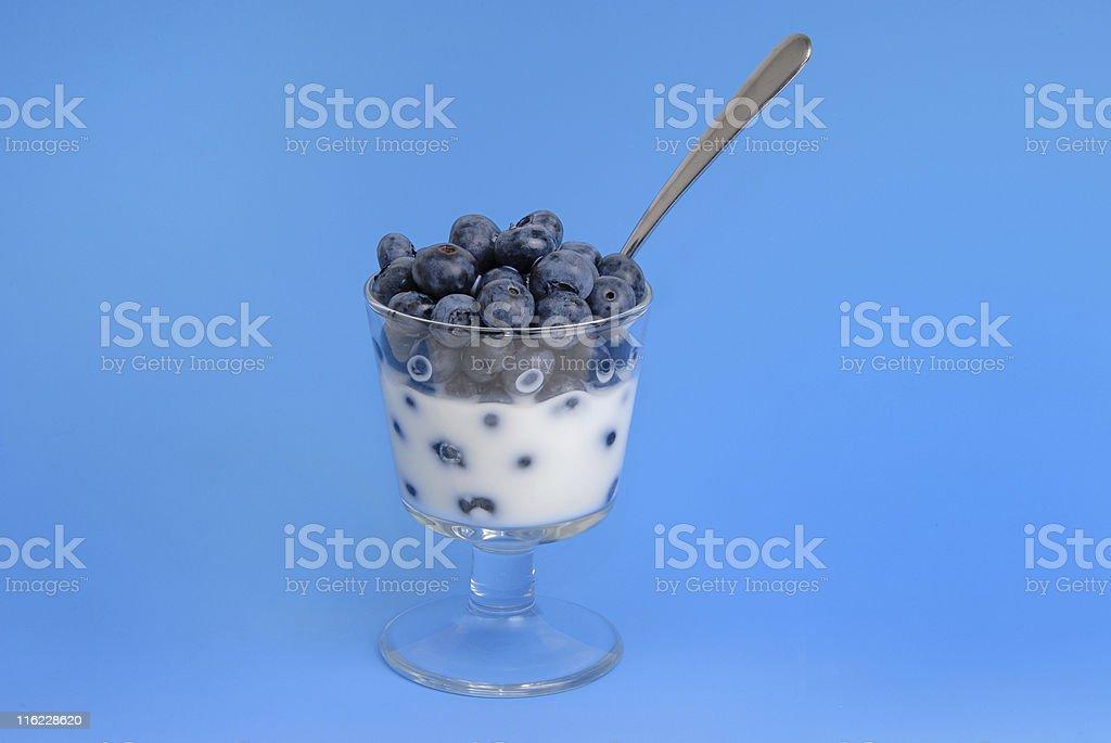 Blueberry Dessert royalty-free stock photo