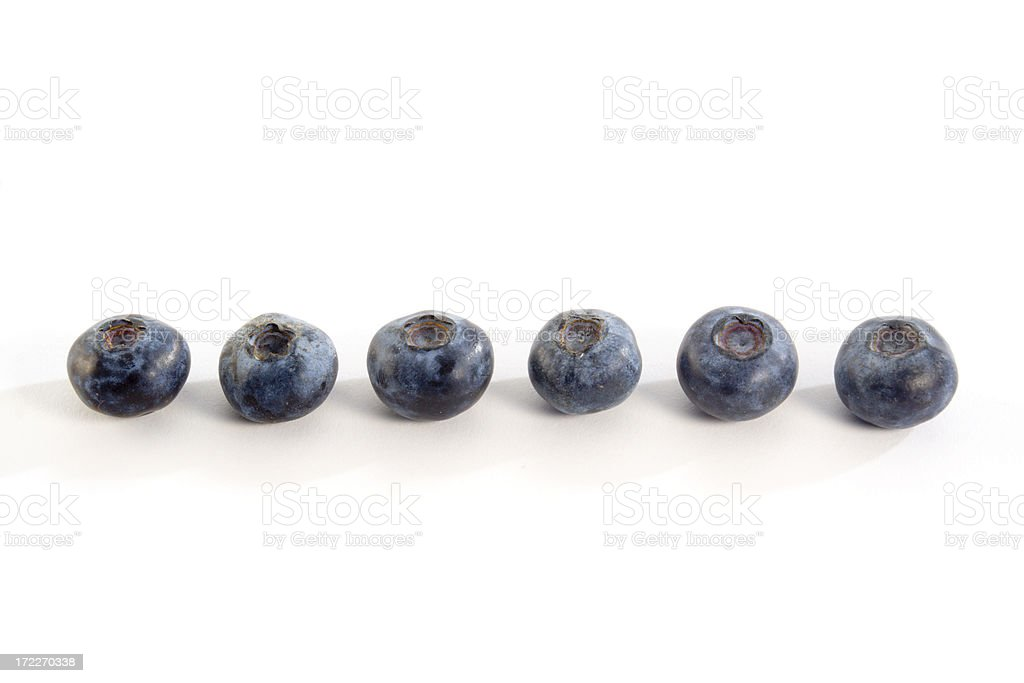 Blueberry in a Row royalty-free stock photo
