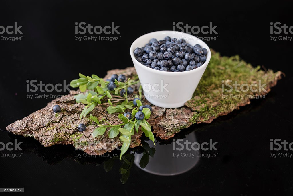 Blueberry in white bowl on bark with moss – zdjęcie