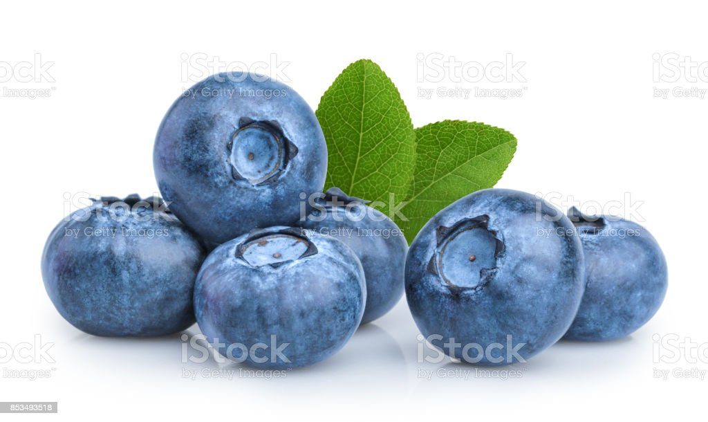 blueberry isolated on white background стоковое фото