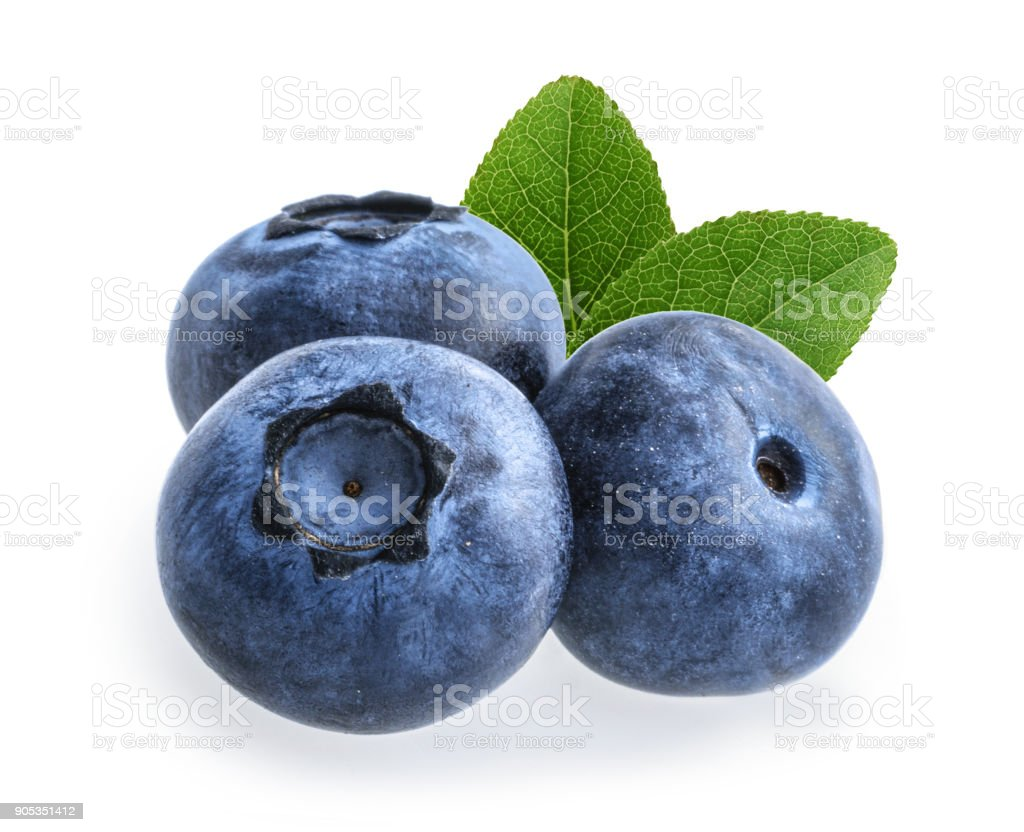 blueberry isolated on white background stock photo