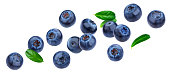 istock Blueberry isolated on white background with clipping path 1170356804