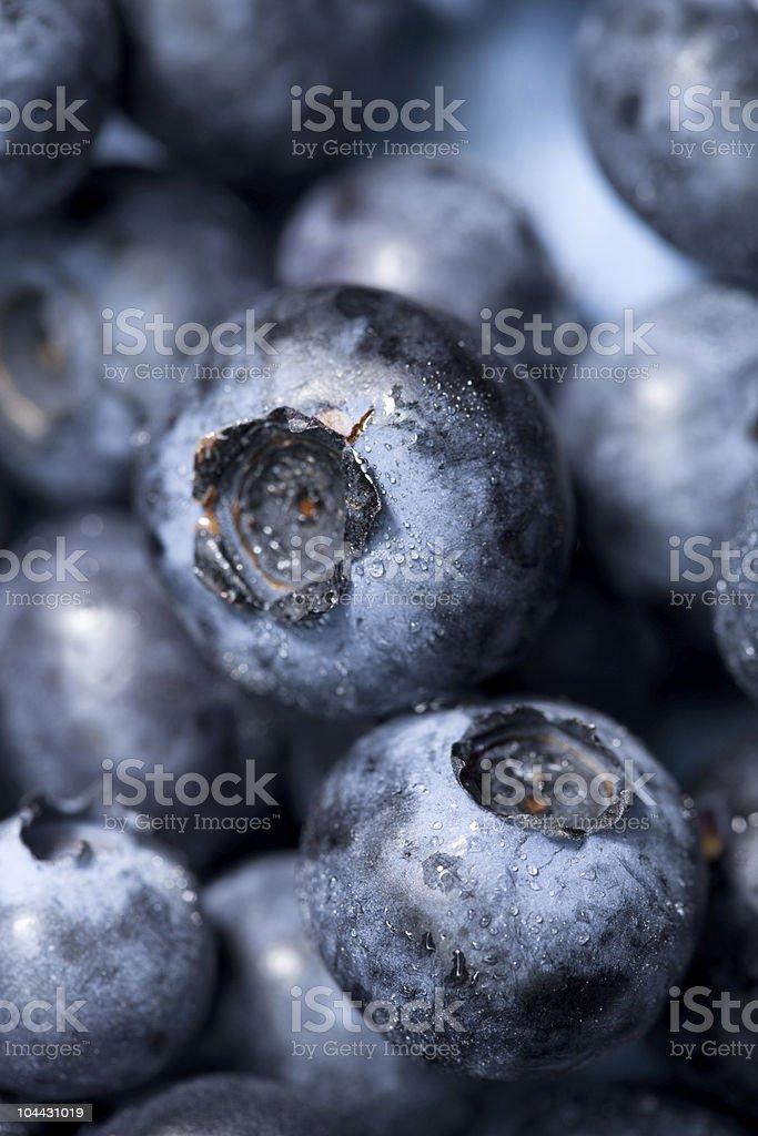 blueberry macro background royalty-free stock photo