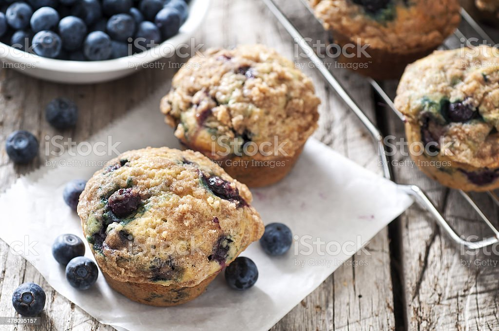 Blueberry Muffin stock photo