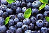 istock blueberry 119381954