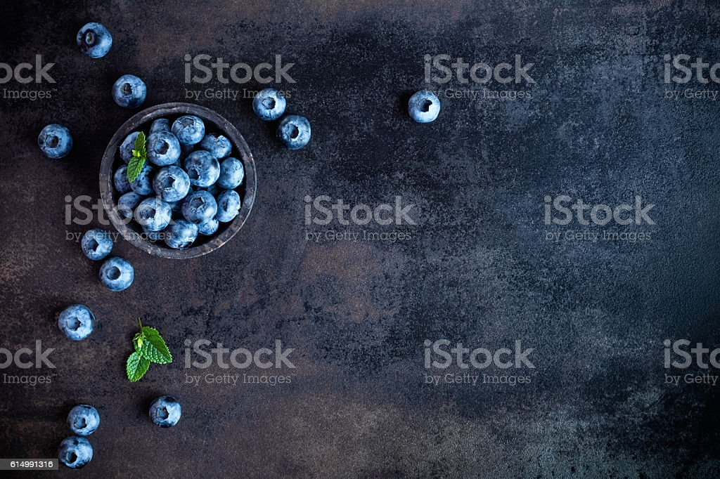blueberry bildbanksfoto