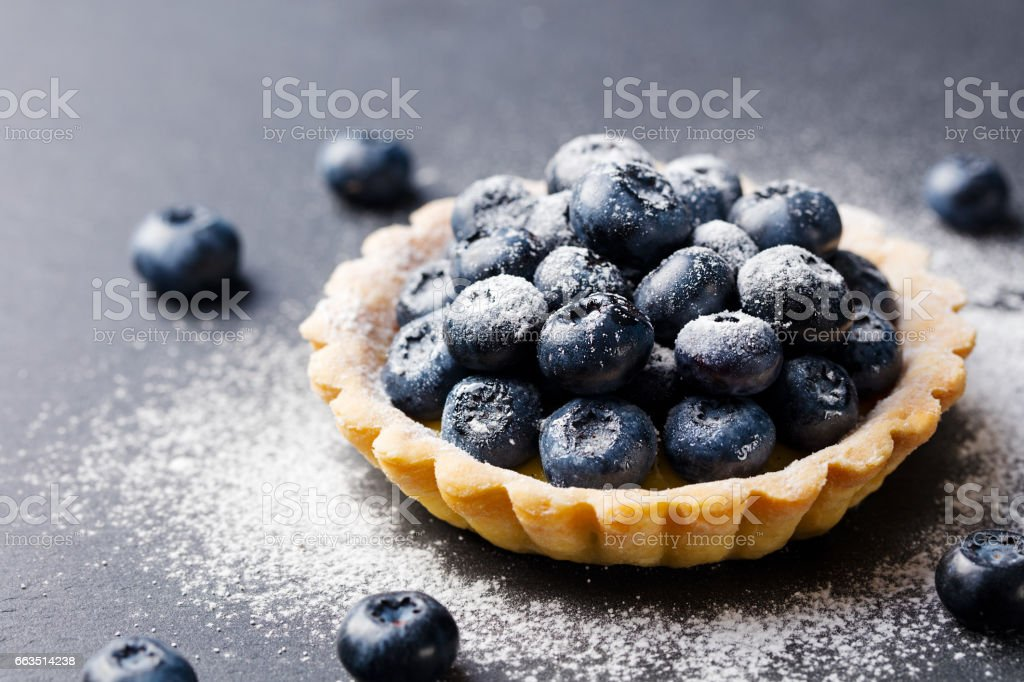 Blueberry tartlet, pie, tart with vanilla custard. Slate stone background. Copy space. stock photo