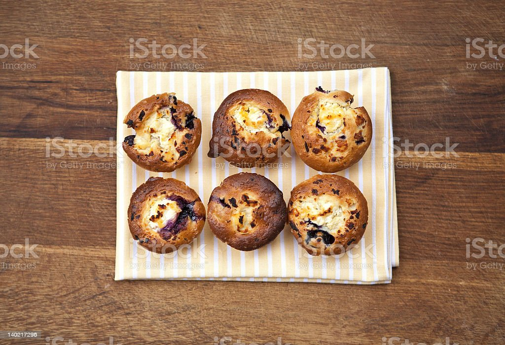 blueberry мuffin royalty-free stock photo
