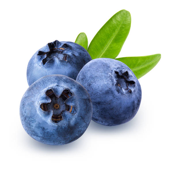 Blueberry with leaf isolated on white background with clipping path Fresh blueberry with leaf isolated on white background with clipping path blueberry stock pictures, royalty-free photos & images