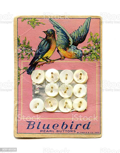 Bluebird pearl button card 1923