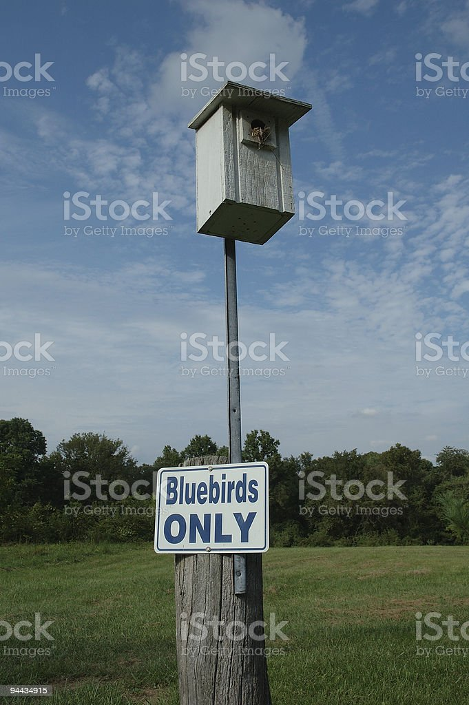 Bluebirds Only - A Segregated Neighborhood royalty-free stock photo