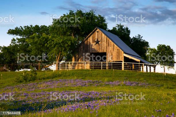 Photo of Bluebonnet Trail Barn on the Hill, Near Ennis Texas