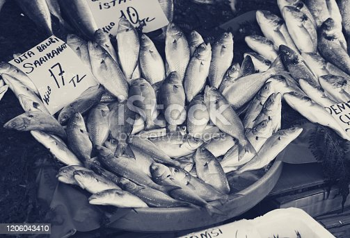 Raw wet bluefish with price tag at fish market in Istanbul, Turkey. Black and white retro toned image.