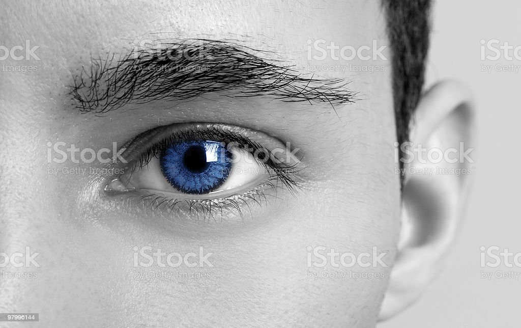 Blues Eyes royalty-free stock photo