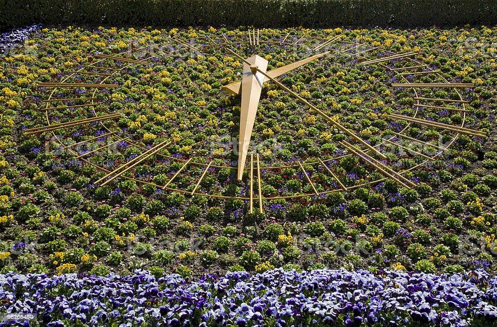 Blumenuhr royalty-free stock photo