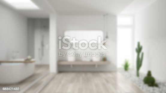 istock Blur background interior design, minimalist white bathroom with succulent garden, hotel, spa 683421432