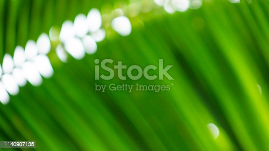 876018792istockphoto Blur green leaf abstract background 1140907135