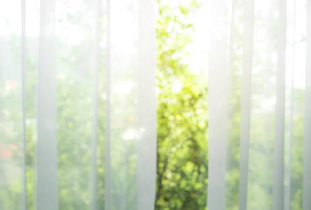 blur der weißen vorhang mit fensteransicht / baum-garten - gardinen weiß stock-fotos und bilder