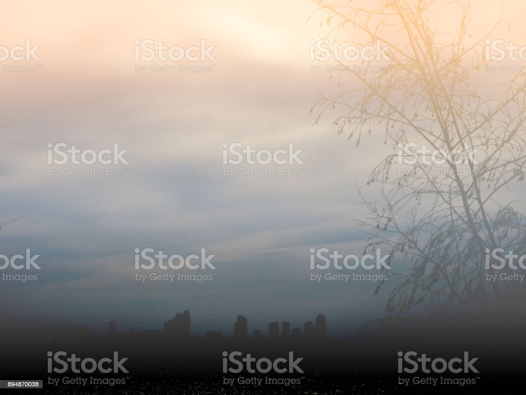 blur silhouette of city tree in fog on winter season stock photo