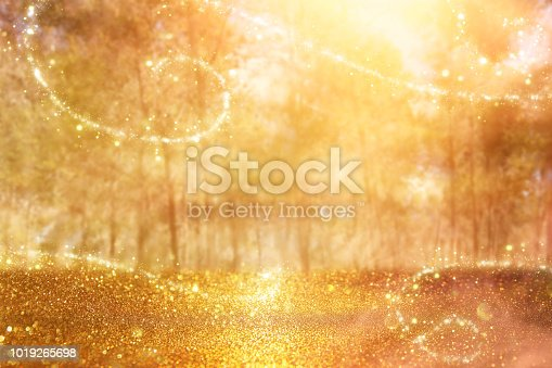 istock blurred abstract photo of light burst among trees and glitter golden bokeh lights. 1019265698