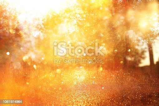 istock blurred abstract photo of light burst among trees and glitter golden bokeh lights. 1061974964