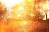 木々 とキラキラ黄金ボケ ライト光バーストのぼやけの抽象的な写真。