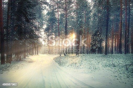 istock blurred background forest snow winter 486987962