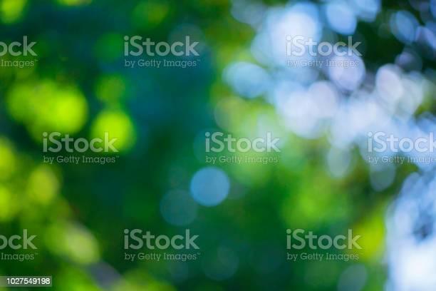 Photo of Blurred bokeh effect