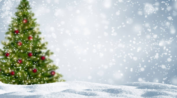 blurred christmas tree in white snowy landscape - non urban scene stock pictures, royalty-free photos & images