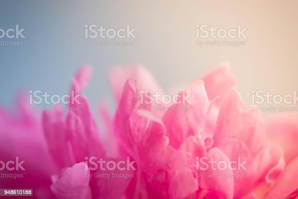 Blurred delicate petals of a pink peony picture id948610188?b=1&k=6&m=948610188&s=612x612&h=8yjv18wn1wl7gsnh9tkoxsm wvd2tvnfuxzwaz5ervc=